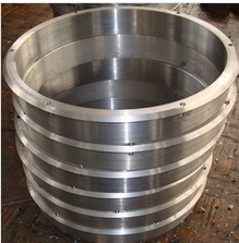 stainless steel Forged forging Power generation Turbine Seal ring vane carrier rings